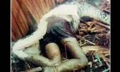 ಮನಸ್ಸನ್ನು ಕದಿಯುವ ವಿಸ್ಮಯಗಳ ಸವಿ