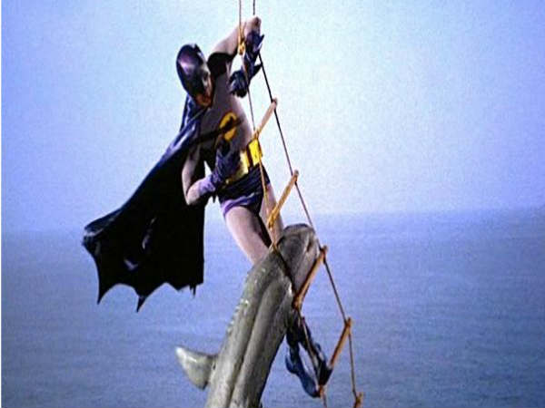 SHARK REPELLENT