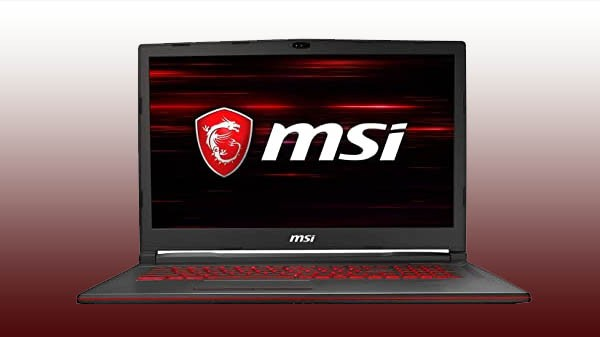 MSI GL73 8SE-039IN