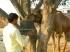 ಅತಿವೇಗದ ಇಂಟರ್ನೆಟ್ ಹೊಂದಿರುವ ಭಾರತದ ಒಂದೇ ಹಳ್ಳಿ