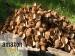ತೆಂಗಿನ ಕಾಯಿ ಚಿಪ್ಪಿಗೆ 1400 ರುಪಾಯಿ! ಭಾರತೀಯರಿಗೆ ಶಾಕ್ ನೀಡಿದ ಅಮೇಜಾನ್
